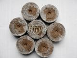 Торфоперегнойные и кокосовые таблетки Джиффи-7
