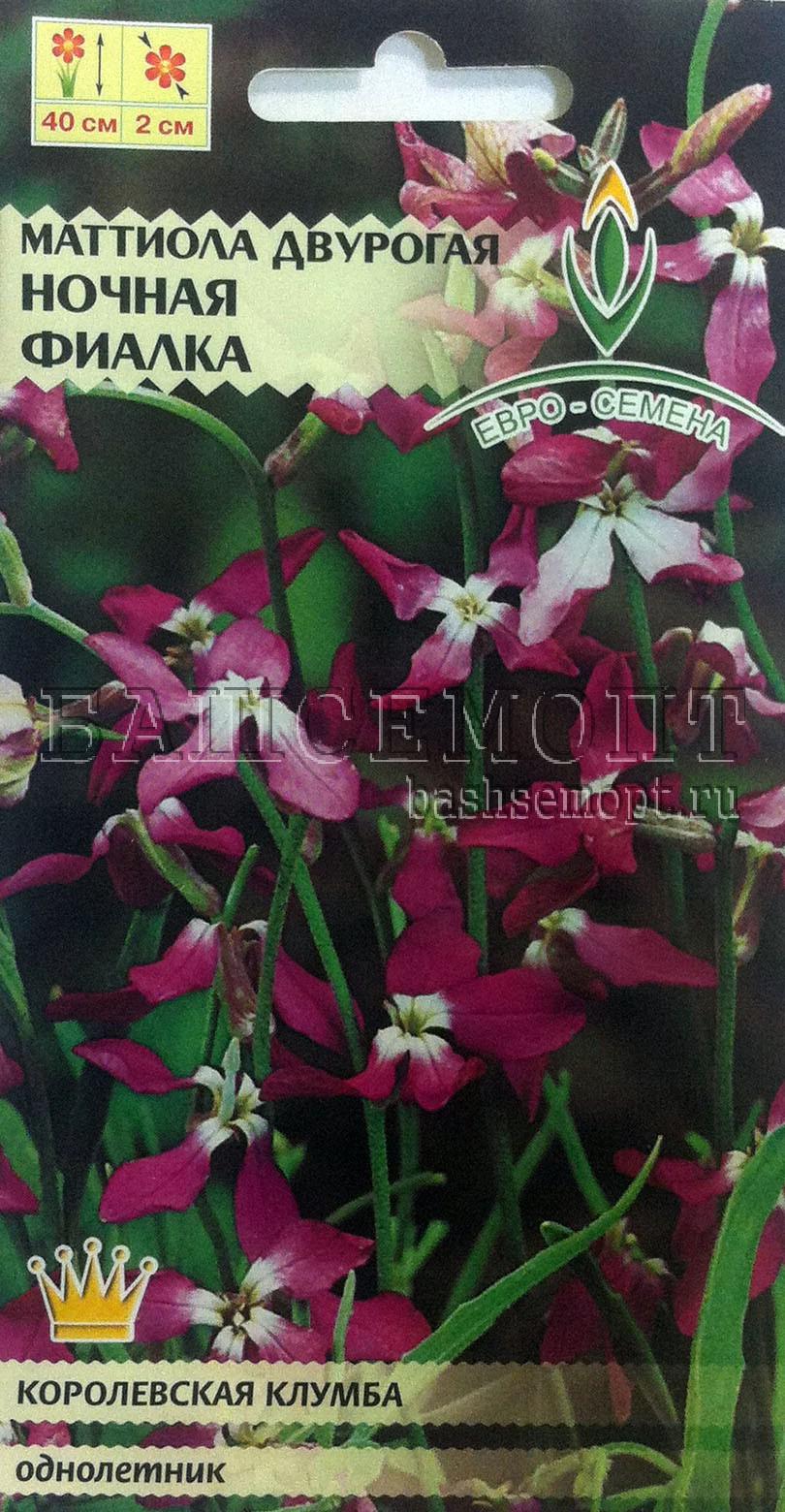 Матиола розовая ночная фиалка выращивание 58