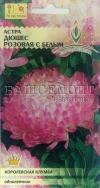 Астра Дюшес розовая с белым (ЕС)(Ц.пакет)